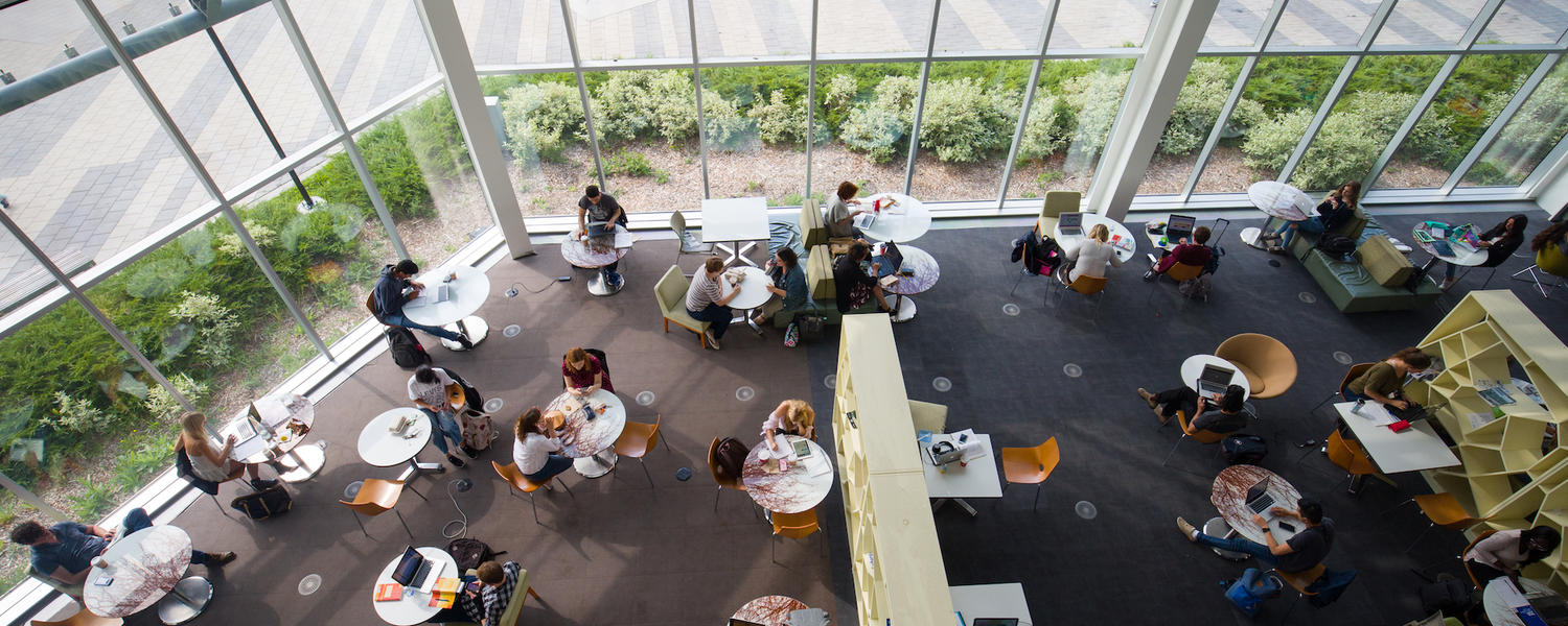 Overhead view of students studying around tables in front of a large window