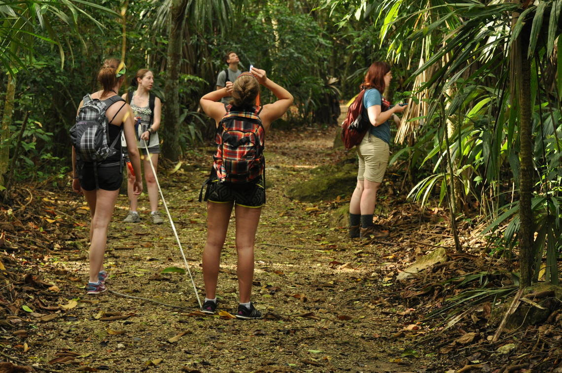 image of students in rainforest looking up binoculars