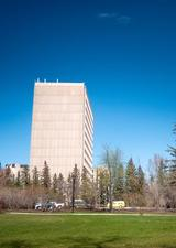 Social Science Tower in spring
