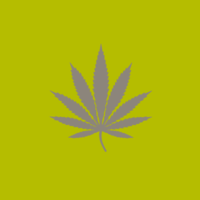 Grey outline of a cannabis leaf on a green background
