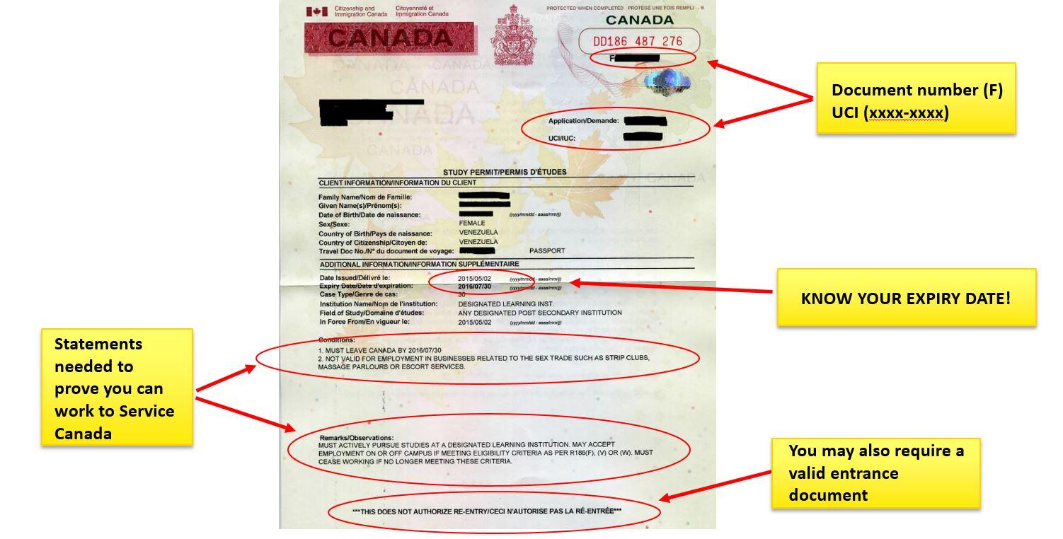 Study Permits   University of Calgary