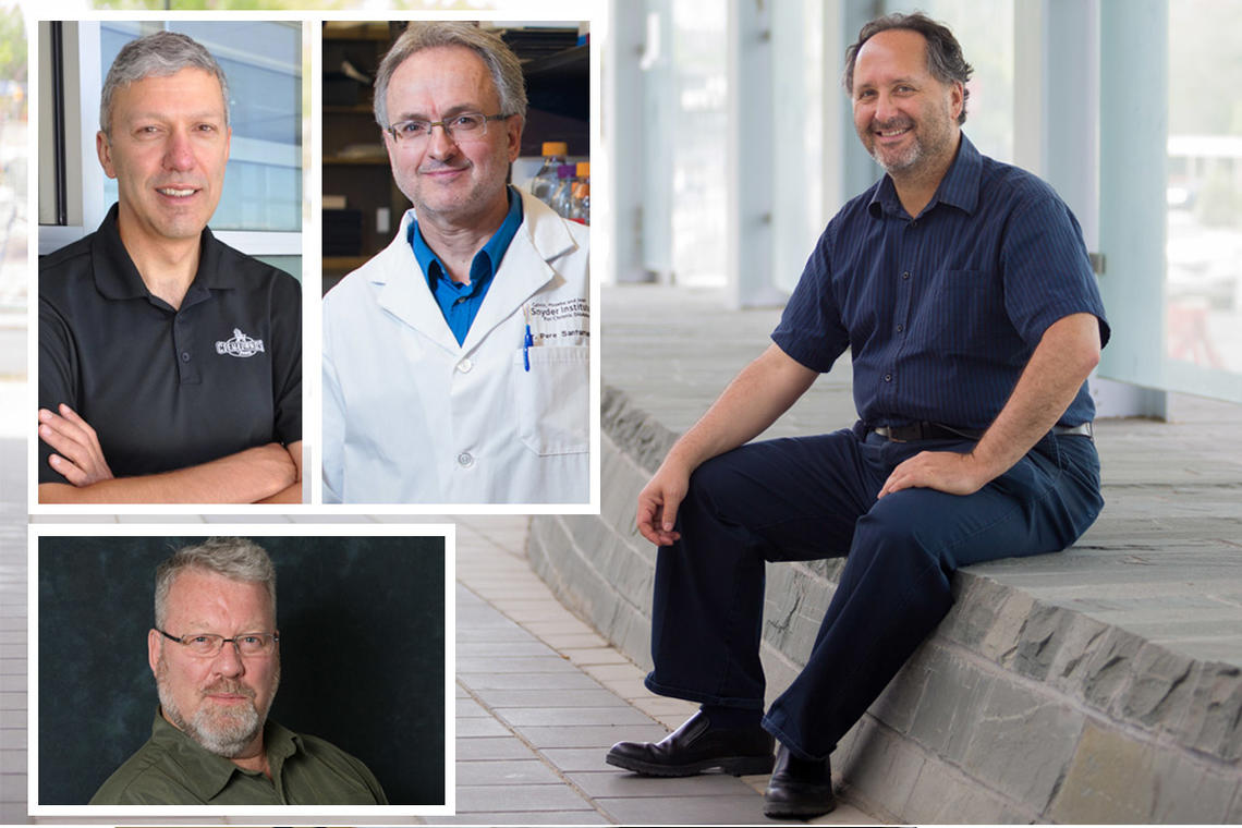 Four University of Calgary scholars who will be inducted into the Royal Society of Canada 2017 as new Fellows are, clockwise from top left, William Ghali, Pere Santamaria, Barry Sanders, and John Ferris.