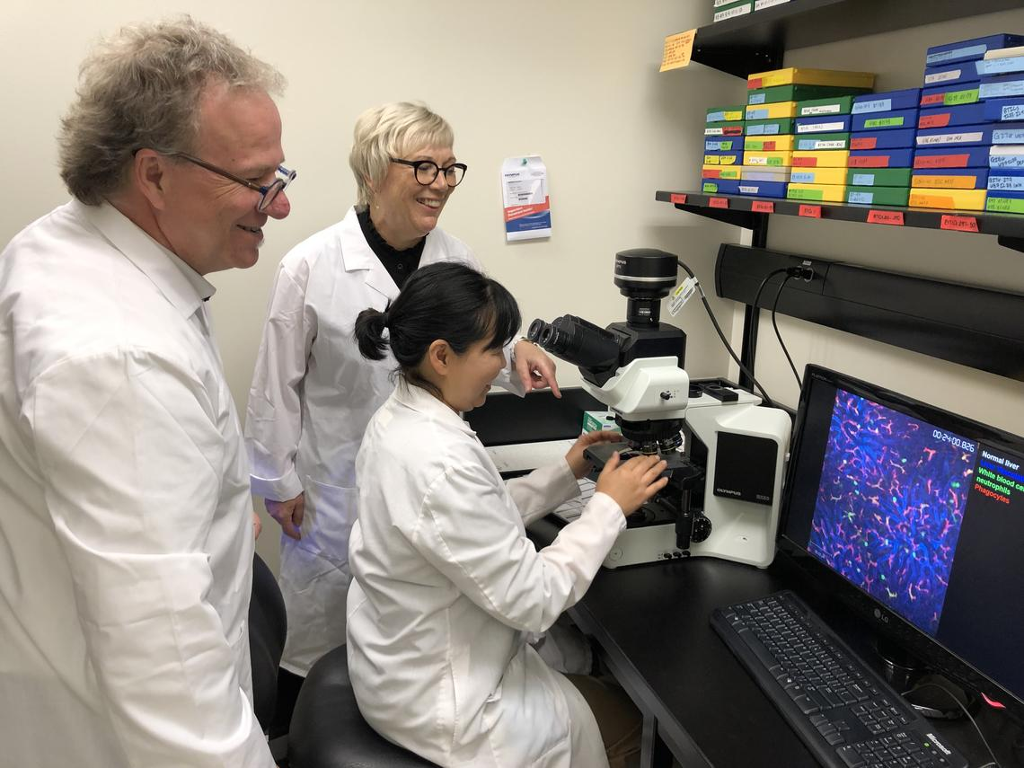 Researchers in lab looking at microscope