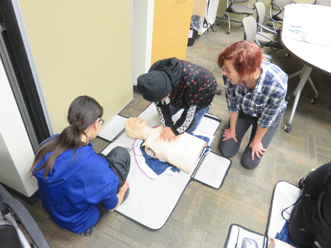 Morley students get to try hands-on training with nursing's CPR manikins.