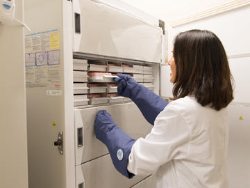 A centralized IMC biobank has been developed to process patient samples and samples for long term storage for future research in chronic disease. These shared samples are made available for all investigators and their collaborators.