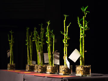 The 2019 Sustainability Award trophies
