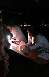 UCalgary students and researchers share insights into the brain, human and otherwise, at Beakerhead