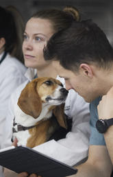 Dog and vet med student share a moment